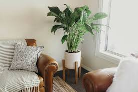 Mid Century Plant Stand Modern Plant Stand Home Design Ideas