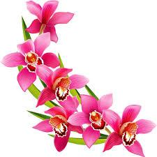 Clip Are Clipart Flowers Under Fontanacountryinn Com