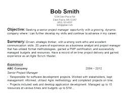 Resume Sample Objectives Sample Objectives For Resumes Career