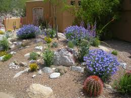 Small Picture Desert Garden Ideas Garden Design Ideas