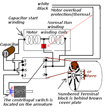 dryer motor yes it is this is electrical drawing there seems to be taboo on showing any mechanical parts the switch is a mechanical device and only the contacts are