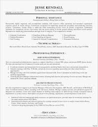 General Resume Template Microsoft Word Good Professional Resume
