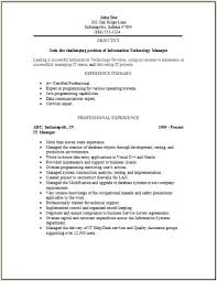 Information Technology Resume Template Information Technology Resume  Template Free Excel Templates Template