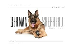 Dog Web Design Pet Sitting Web Template