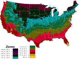Us Growing Zone Chart Planting Info Usda Map Canecreeklilies Com
