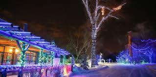zoo lights. Contemporary Zoo ZOOLIGHTS Ready For The Holidays Photo Credit Sergei Belski On Zoo Lights H