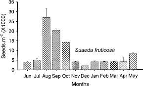 Seasonal Distribution Of Suaeda Fruticosa Seeds In An Arabian