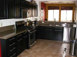 Contemporary Kitchen Cabinet Doors How To Build Cabinet Doors With Glass Panels Kitchen Wonderful