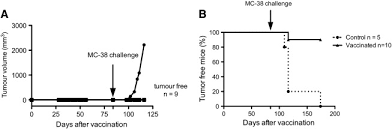 antitumor immunity induced after α irradiation neoplasia 2figure