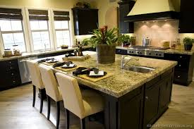Small Picture Kitchen Design Ideas Pictures