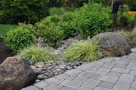 Small Picture Landscape Design and Rain Gardens