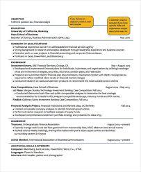Examples Of Education Resumes 15 Basic Education Resume Templates Pdf Doc Free Premium