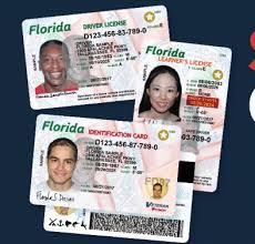 New Need One A Do Driver's License South You News 11 Gets Look On - Florida