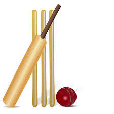Image result for cricket ks2