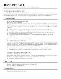 Resume Profile Summary Noxdefense Com