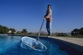 Why do pool cleaners appear and how they work Global Talent