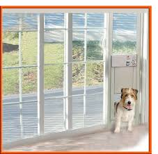 full size of hale through the glass pet doors sliding glass door with doggie door built