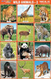wild animals chart. Simple Animals Wild Animals Chart And L