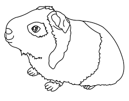 Small Picture pigs coloring pages