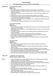 Ios Developer Resume Resume Examples Gorgeous Ios Developer Resume