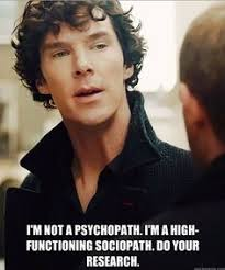 Sherlock Meme on Pinterest | Irene Adler, Johnlock and Phoenix Wright via Relatably.com