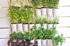 efficient urban gardening ideas