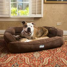 beautyrest colossal rest orthopedic memory foam extra large dog bed large dog beds on sale y10