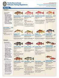 Fish You Can Catch Gulfstream Charters
