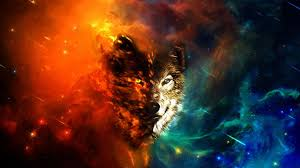Wolf Abstract HD Wallpapers - Wolf ...