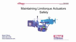 flowserve limitorque actuator wiring diagram flowserve flowserve limitorque actuators general safety precautions and