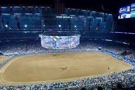 Rodeo Photos At Nrg Stadium