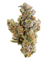 9 Best Strains For Newbie Smokers Tlc Collective