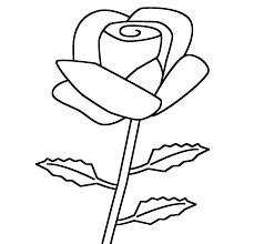 Tuyển tập các bức tranh tô màu hoa hồng đẹp nhất cho bé | Trang tô màu,  Sách tô màu, Hoa hồng đẹp