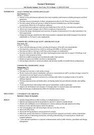 Lead Communications Resume Samples Velvet Jobs
