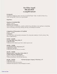 Lpn Duties For Resume Examples Cna Duties Resume 2018 Cna Skills