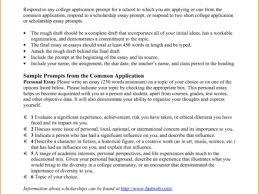 essay format best photos of paragraph format example paragraph format for college essaycollege application essayjpg