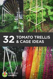 Diy tomato cage Wire 32 Free Diy Tomato Trellis Cage Ideas To Grow Your Tomato Big And Healthy Morningchores 32 Diy Tomato Trellis Cage Ideas For Healthy Tomatoes