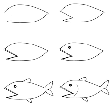 bass fish drawing step by step. Beautiful Step Bass Fish Drawing Step By  Photo10 In Fish Drawing Step By L