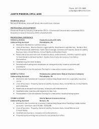 Underwriter Resume Example New Sample Insurance Underwriter