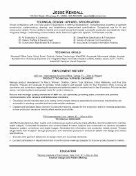 Technical Support Engineer Resume Format Unique Technical Resume
