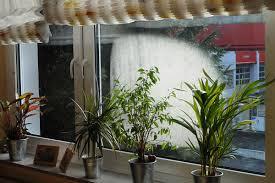Kondenswasser Am Fenster Woher Es Kommt Und Was Dagegen Hilft