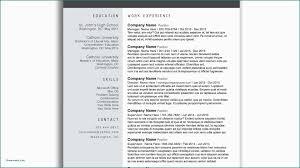 Sample Resume Word Format Download Valid Sample Resume Templates