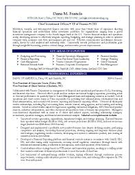 Chief Project Engineer Sample Resume 17 Cfo Resume Examples