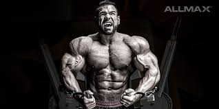 best chest workout routine building