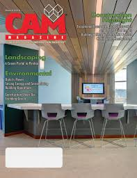 Bluecolt Lighting March 2019 Cam Magazine By Construction Association Of