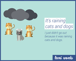 animated raining cats and dogs. Modren Dogs With Animated Raining Cats And Dogs