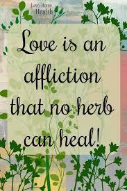 Irish Love Quotes Interesting Pin By Robyn Tyson On LOVE Pinterest Irish Quotes