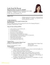 Formal Resume Template New Application Letter Format For Volunteer