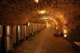 Wine Cellar Pictures Bajilo Wine Cellar Film In Serbia