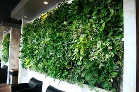 amazing indoor living wall kit with rustic frame intricate project greenery village wallpaper system art herb garden canada diy toronto uk lighting moss